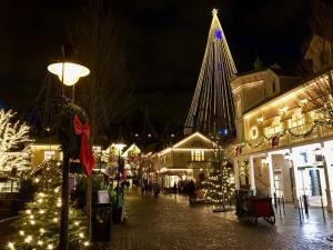 Liseberg at Christmas. The park presents itself in a very different costume. Photo: private